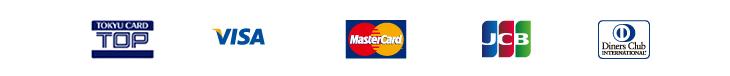 VISA MasterCard DinersClub