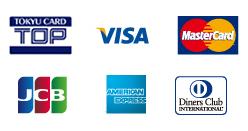 VISA MasterCard JCM AmericanExpress DinersClub